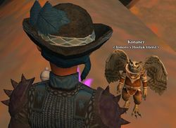 Hatpet